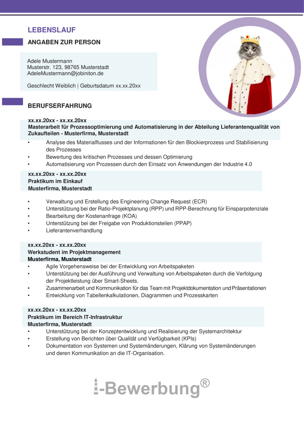 Work Experience Resume Cv Format 1 The 1