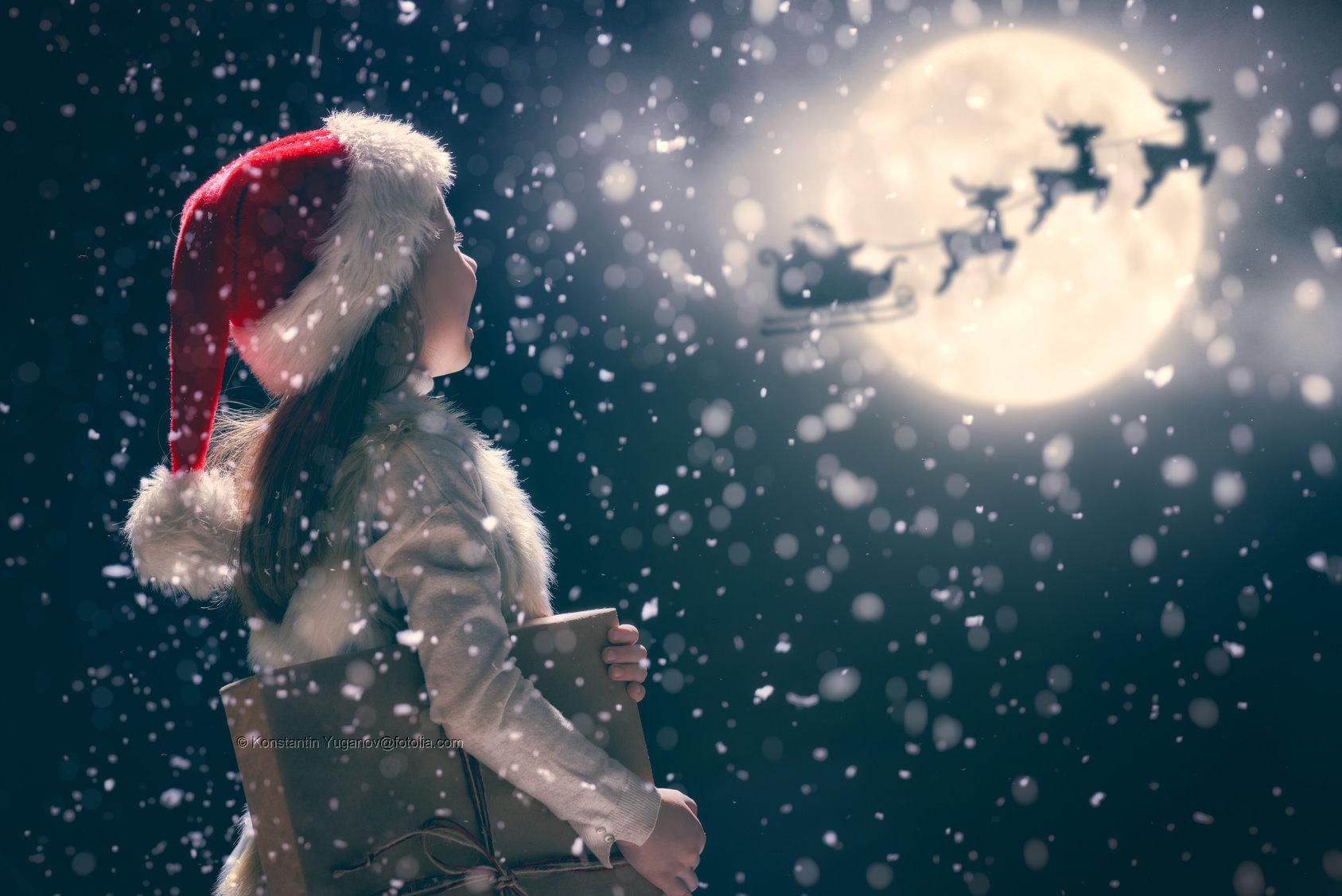 Ein frohes und gesundes Weihnachtsfest wünscht IPSER