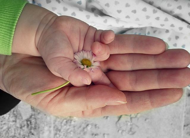 Schwanger – Rechte und Pflichten