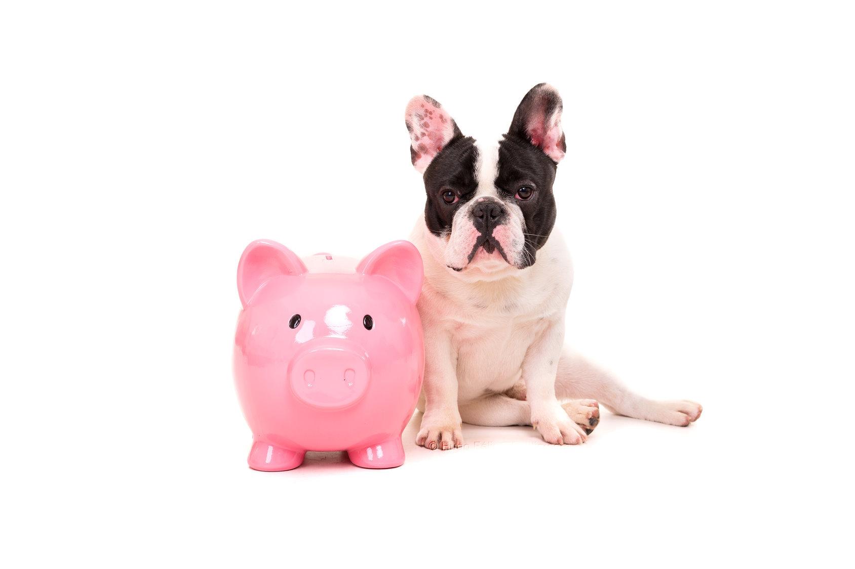 Was muss man bei Sonderzahlungen beachten?